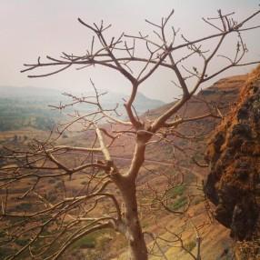 At the mid-way of Hathgadh, Saputara