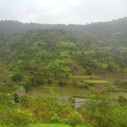 From the mid-way of Kalsubai-trek