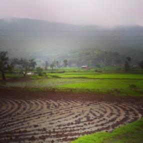 Farming on Kalsubai Peak