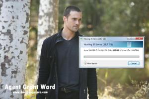 Agent Grant Ward