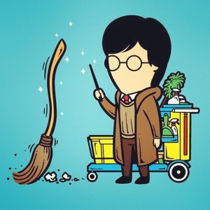 Harry 'Sweeper' Potter
