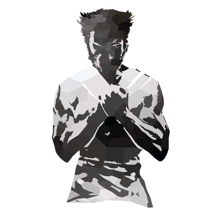 Wolverine Low Poly Body Details