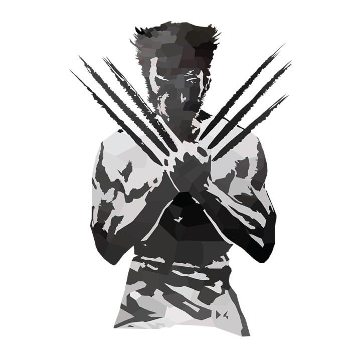 Wolverine Low Poly Complete