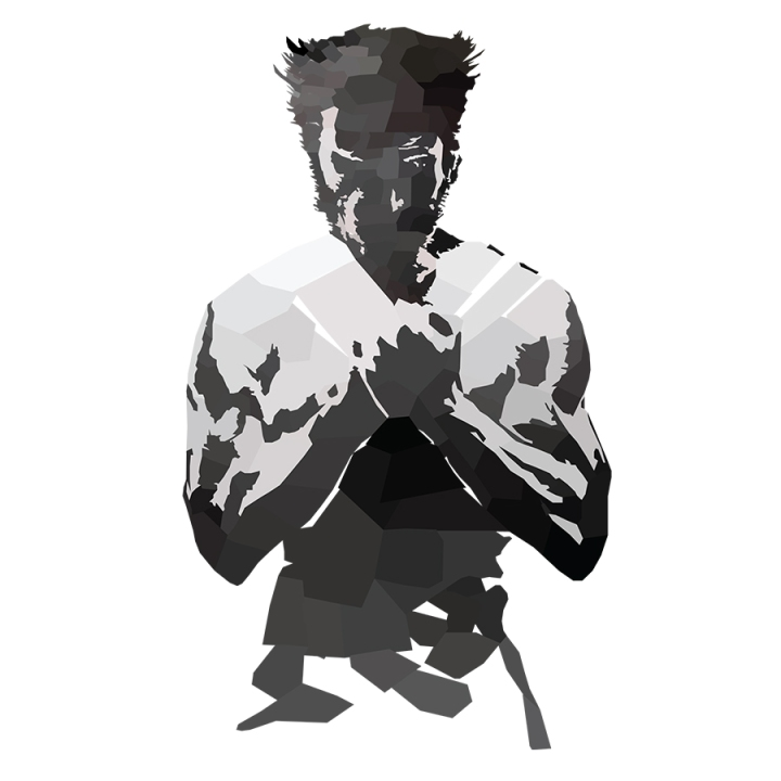 Wolverine Low Poly Hands